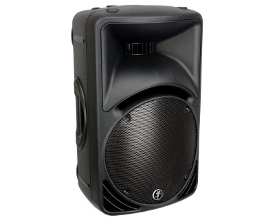 "C300z 12"" 2-Way Compact Passive Moulded Plastic PA Speaker"