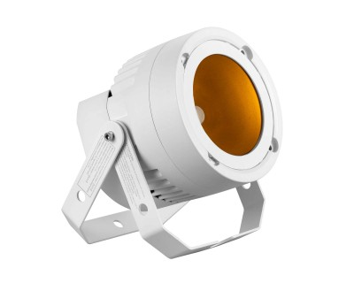 RUSH Par 3 RGB Single Lens Color 36W Fanless LED PAR WHITE