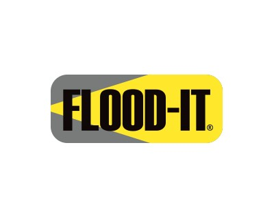Flood-IT